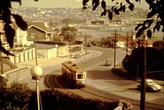 Approaching the sweeping curve of New South Head Road between Rose Bay and Vaucluse in 1956 Sydney City, Sydney Harbour Bridge, Bronte Beach, Metro Rail, Rose Bay, New South, Hyde Park, Sydney Australia, The Guardian
