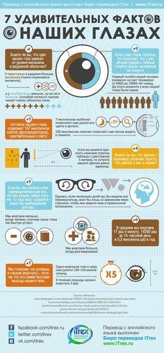 #Инфографика: 7 удивительных фактов о наших глазах!