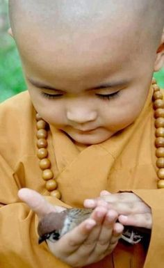 Child Monk and Sparrow. follow @GalaxyCase to see more cutest animals kids ...