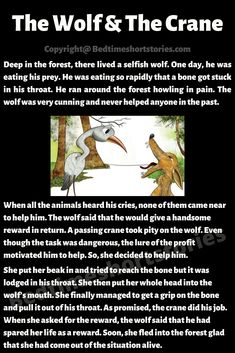 This is The Wolf And The Crane Story for kids. Deep in the forest, there lived a selfish wolf. One day, a hungry wolf was eating his prey. He was eating. English Poems For Kids, English Lessons For Kids, Kids English, English Reading, Learn English Words, English Grammar, Short Moral Stories, English Short Stories, Moral Stories For Kids
