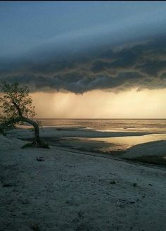 My favorite chase from this summer. Taken in Delta Beach Manitoba Canada with Westman Storm Chasers.