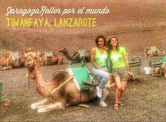 ¡Lanzarote! Camel, Animals, Roller Blading, Zaragoza, Lanzarote, Animales, Animaux, Camels, Animal