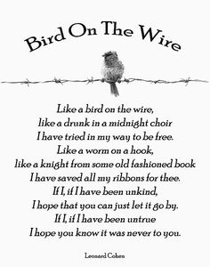 Bird On The Wire - Leonard Cohen One of my all time favorite songs.