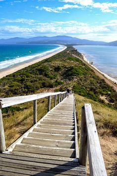 Bruny Island, Tasmania - Australia one of my favorite places ever Places Around The World, The Places Youll Go, Great Places, Places To See, Beautiful Places, Tasmania Australia, Australia Travel, Australia Hotels, Sydney Australia