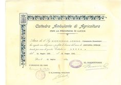 corso agricoltura generale 1925