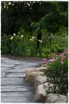 Garden Paths, Outdoor Decor, Stepping Stones, Sidewalk, Shade Garden, Outdoor, Home And Garden, Garden Inspiration