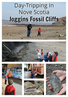 Day-tripping In Nova Scotia - Joggins Fossil Cliffs - Everything Unscripted Nova Scotia Travel, Canadian Travel, Canadian Rockies, East Coast Road Trip, Fun Places To Go, Atlantic Canada, Newfoundland And Labrador, Prince Edward Island, Travel Oklahoma