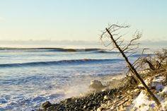 winter beach Surf Accessories, Winter Beach, Saturdays Nyc, Surfing, Explore, Water, Outdoor, Sea, Image