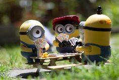 Minion photos have been popping on my newsfeed for weeks now, so I got to get those Minions and take photos as well. Several days ago, I went to McDonald's to order some Happy Meal. Minion Photos, Funny Minion Pictures, Minions Love, My Minion, Minion Humor, Disney Wallpaper, Cartoon Wallpaper, Minions Quotes