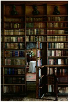 This looks exactly like the library's secret passageway in the castle where I photographed a wedding in Scotland. Love.