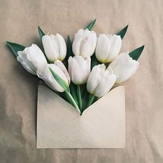 """floralls: """" envelope series I by anna remarchuk """""""