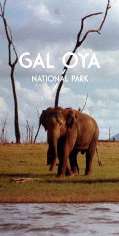 Gal Oya National Park, Sri Lanka #VisitSriLanka