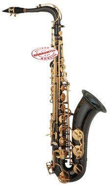 Best Buy Cheapest Student Tenor Saxophone Black with Case TERN-BK