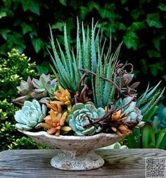 23. #Outdoor Decor - 43 #Outstanding Succulent #Gardens You Can Create at Home…