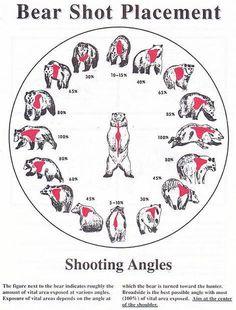 Survival camping tips Moose Hunting, Deer Hunting Tips, Big Game Hunting, Hunting Rifles, Turkey Hunting, Archery Hunting, Hunting Stuff, Pheasant Hunting, Hunting Season