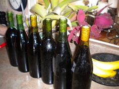 "You never had to buy wine because people kept giving you their homemade wine which was the ""Best"""