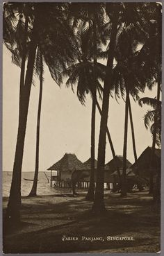 History Of Singapore, Singapore Photos, Village Photography, Landscape Photography, Nature Photography, Thailand Art, East Indies, The Old Days, Fishing Villages