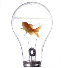 innovación - Buscar con Google