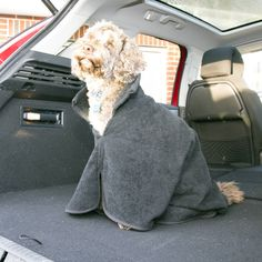Personalised Towelling Dog Cape