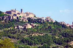 Montepulciano Travel Guide - Tuscany Hill Town and Wine Center