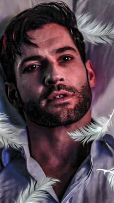 8 Genre Shows That Were Canceled Too Soon (That Aren't Firefly) — Strange Harbors Tom Ellis Lucifer, Lauren German, Morning Star, Angels And Demons, Film Serie, Series Movies, Book Series, Movies Showing, Photos