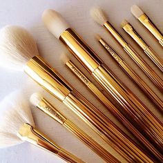 Sonia Kashuk Limited Edition 10 Piece Makeup Brush Set