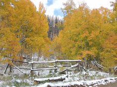 October in Colorado, near Fraser