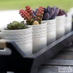 We love using succulents on our praise tray for a unique, trendy look! How do you use yours?