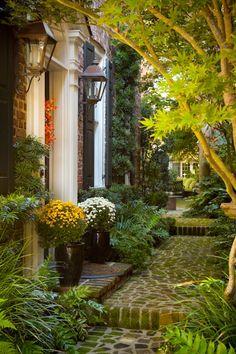 Splendor in the South : Photo