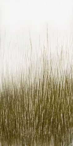 Pressed Glass   Organics   Bear Grass Fade Pressed   Materials   3form
