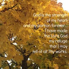Sharing God's Handiwork With Our Grandkids - SandwichINK for the Sandwich Generation Comforting Bible Verses, Encouraging Bible Verses, Bible Encouragement, Countdown For Kids, Jesus Etc, Psalm 50, Prophecy Update, Happy Home Fairy, Let Go And Let God