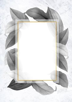 Golden frame on a gray leafy background illustration Tropical Background, Flower Background Wallpaper, Framed Wallpaper, Frame Background, Flower Backgrounds, Wallpaper Backgrounds, Background Designs, Screen Wallpaper