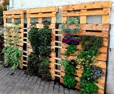 If you don't have garden at your apartment then this idea of crafting pallet wall planter. This project pleases your sense with pleasure. Crafting this project will help you to have healthy environment. Grow whatever flower you like to have synthesized and organic look.