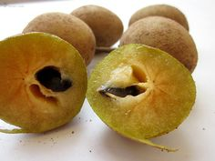 sapota / chikoo Indie, Fruit, Food, The Fruit, Meals, Yemek, Eten