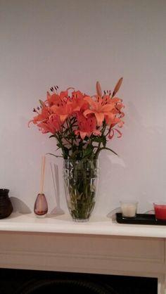 Orange Flowers Orange Flowers, Vase, Painting, Home Decor, Homemade Home Decor, Painting Art, Orange Blossom, Flower Vases, Paintings