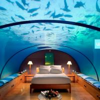 I want this to be my bedroom!! I also want it to be filled with dolphins. kthnx