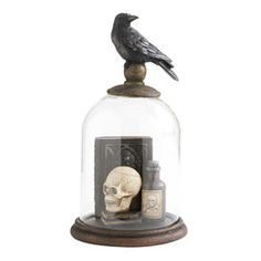 11 Inch Crow on Glass Dome - Vintage Market And Design