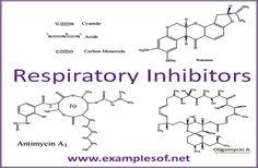 RESPIRATORY INHIBITORS examples
