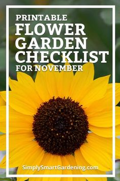 Are you doing what you need to do get flower garden ready for winter? Discover what you need to do this month. Download my free November flower garden checklist. It includes everything you need to do this month. Click to download my printable checklist o