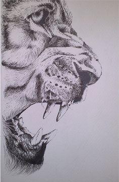 Lion by annie-fine-art animal sketches, animal drawings, art sketches, pe. Fine Art Drawing, Lion Drawing, Stippling Art, Animal Drawings, Cool Art Drawings, Animal Sketches, Lion Art, Art, Pencil Art Drawings