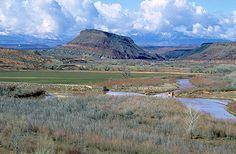 Virgin Anticline and Quail Creek State Park, Utah