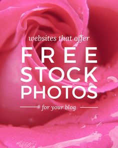Stock Photography - Ideas That Produce Nice Photos Regardless Of Your Skills! Stock Photo Websites, Free Stock Photos, Free Photos, Banners, Site Photo, Wordpress, Web Design, Internet, Blogging For Beginners