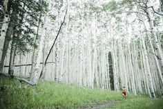 Trail Running in Lockett Meadow, Arizona