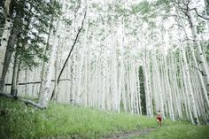Trail Running in Lockett Meadow, Arizona