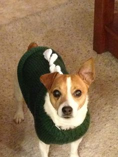 Knitting Pattern For Jack Russell Dog : 1000+ images about Dog on Pinterest Dog sweaters, Dog beds and Dog coats