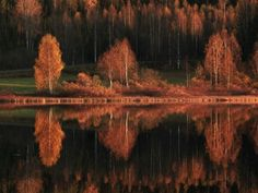 Finnish nature photographer listed the most impressive Finnish landscapes. Check out Finland's 'Ten Most Beautiful Landscapes'