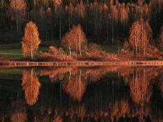 Una fotógrafa de naturaleza finlandesa enumera los paisajes finlandeses más impresionantes.