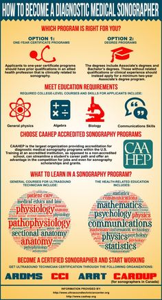 Explore how to become an ultrasound technician or a Diagnostic Medical Sonographer: education requirements, program types, courses and sonographer certification Ultrasound Technician School, Medical Careers, Medical Coding, Medical School, Ultrasound Sonography, Nursing School Prerequisites, Education Requirements, Nursing Degree, Medical Field
