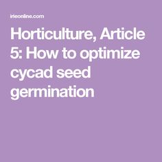 Horticulture, Article 5: How to optimize cycad seed germination