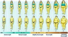 BMI: The Unreliable Formula that Costs You Money